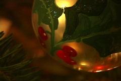Christmas Tree 3 Stock Footage