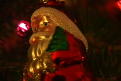Christmas Tree 7 Stock Footage