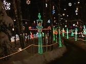 Christmas Wonderland 1 Stock Footage