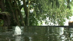 Stock Video Footage of fountain tree