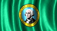 Washington state flag Stock Footage