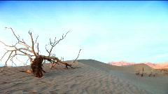 Images of a desert landscape Stock Footage