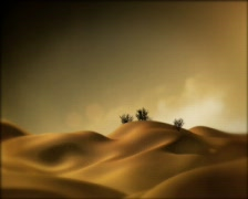 Desert Dolly 04 - stock footage
