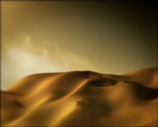 Desert Dolly 02 - stock footage