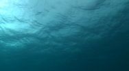 Ocean Surface Waves Stock Footage