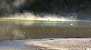 Stock Video Footage of Boiling Hot Mud Water with Bubbles