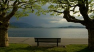 Bench Stock Footage