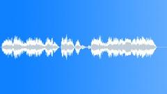 Police dispatch Sound Effect