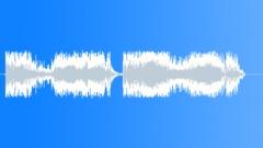 police dispatch - sound effect