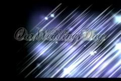 Wedding - stock footage