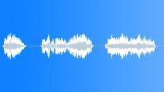 football voice - sound effect