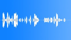 operator voice - sound effect