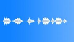 Pilot voice clip Sound Effect