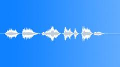 pilot voice clip - sound effect