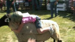 Lamb Day mutton bustin ride 7 M HD Stock Footage