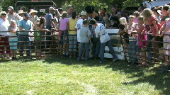 Parade Lamb Day mutton bustin crowd M HD Stock Footage