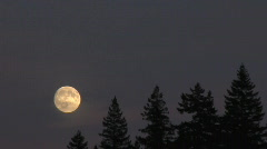 Moon Rise Time Lapse Stock Footage