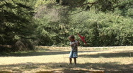 Little boy in summer park Stock Footage