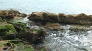 Ocean Water with Algae and Rocks Stock Footage