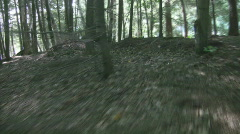 Forest chase scene. - stock footage
