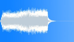 Feedback buzz Sound Effect