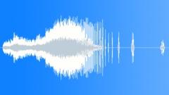 Tuner digtal Sound Effect
