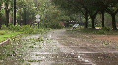 Downed trees litter a street after a hurricane Stock Footage