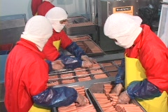 Hot Dog Production  5 Stock Footage
