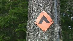 Campsite marker. - stock footage
