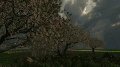 Storm over the Garden of Eden - stock footage