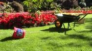 Wheelbarrow In Flower Garden - Anamorphic Stock Footage