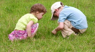 Children explore bug 2 Stock Footage