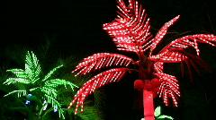 Lighting palms Stock Footage