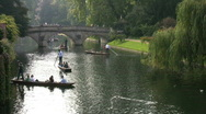 Stock Video Footage of Punting on the river Cam in Cambridge England UK