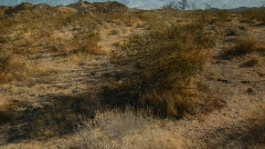 Desert Terrain Stock Footage