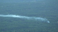Forest Fire Burning with Smoke Stock Footage