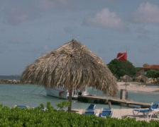 Tropical beach on curacao 3 PAL Stock Footage