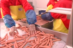 Hot dog Factory - stock footage