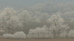 Hard frost - slow zoom out from trees 3 - stock footage
