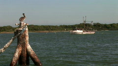 Fishing boat pelican Stock Footage