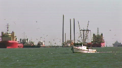 Fishing & crew boats Stock Footage