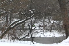 New york winter marathon 2 Stock Footage