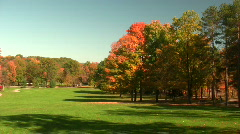 0708-09 - Fall Foliage - MOS - stock footage