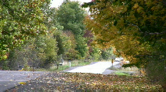 Leaves Blowing Across A Rural Road Fall Countryside Canada Stock Footage