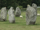 Stock Video Footage of Avebury stone circle