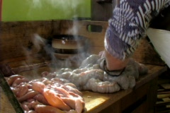 Steaming intestines Stock Footage