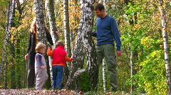 Family of four walking around birch Stock Footage