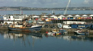Stock Video Footage of Fishing boats and fish market at Brixham Devon England.