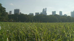 Pan shot meadow in central park Stock Footage