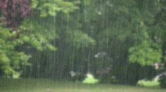 Spring rain Stock Footage
